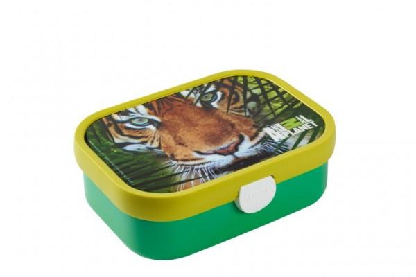 Mepal Lunchbox midi Tiger