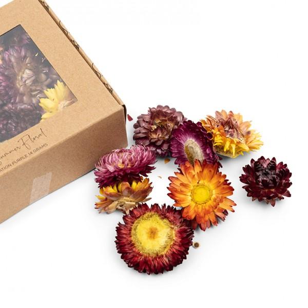 Rivièra Maison Deko Summer Floral purple RIVIERA MAISON 14 x 4 x 10