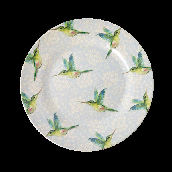 Rice Teller humming bird